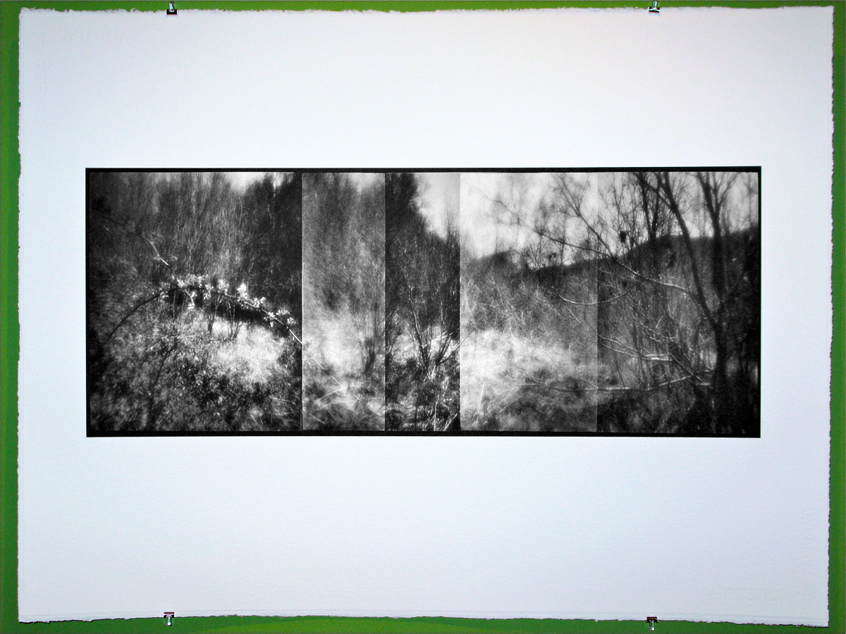 new-zone-plate-image1