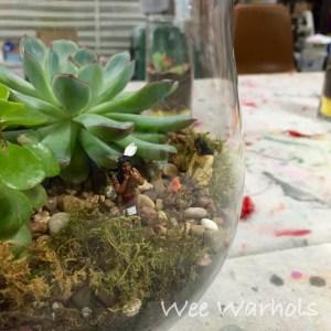 terrarium, terrariums, Wee Warhols, Austin TX, succulents