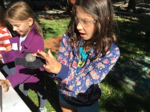 dry ice, Wee Warhols, Halloween workshop, Austin, STEAM camp, Steve Spangler, science, experiment, boo bubbles