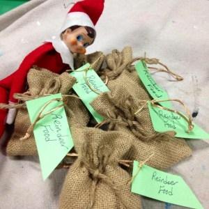 Elf on the shelf, elf, Wee Warhols, Austin tx, Christmas tradition, holiday season, top secret operation, santa's helper