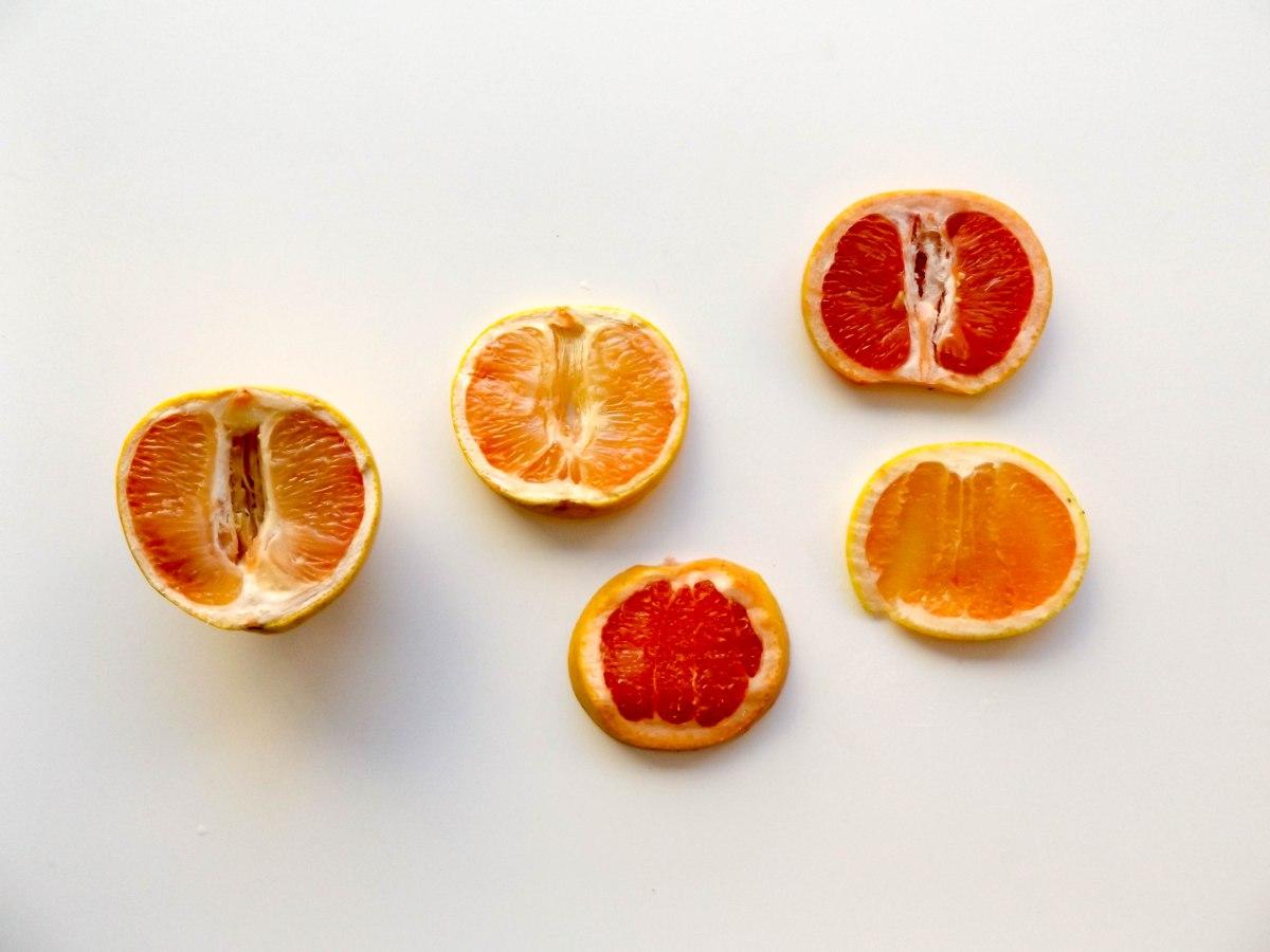 grapefruit (1 of 1)-5