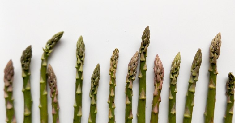 Featured Ingredient: Asparagus