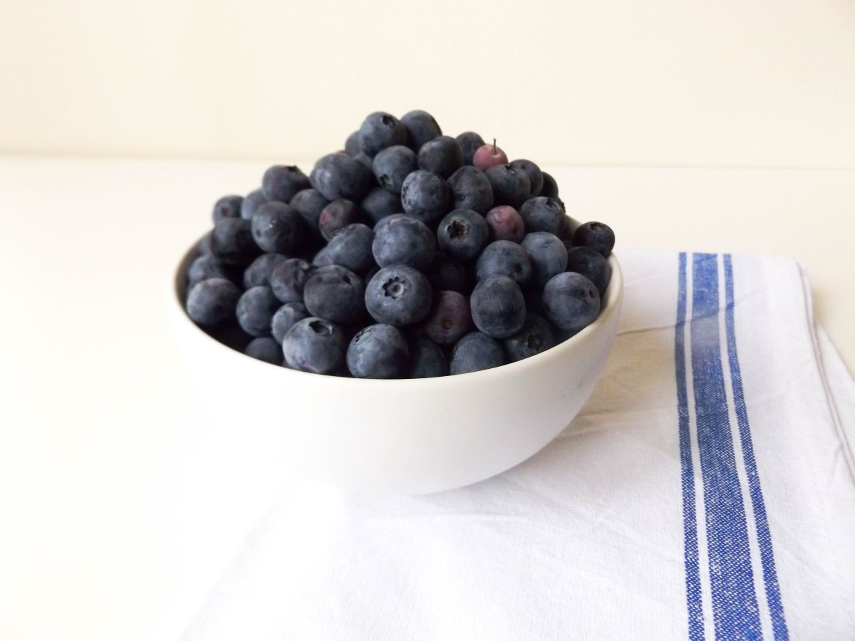 blueberries (1 of 1)-2
