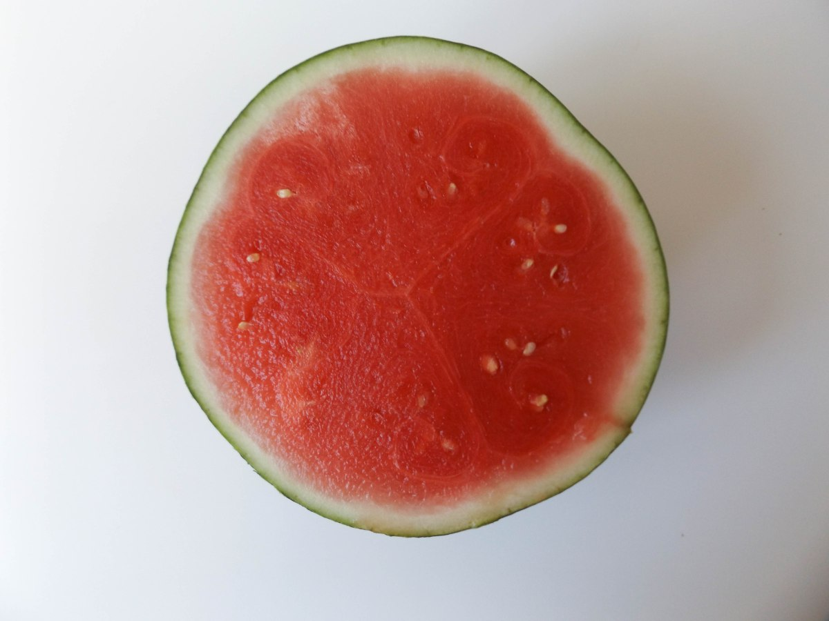 watermelon (1 of 1)-4