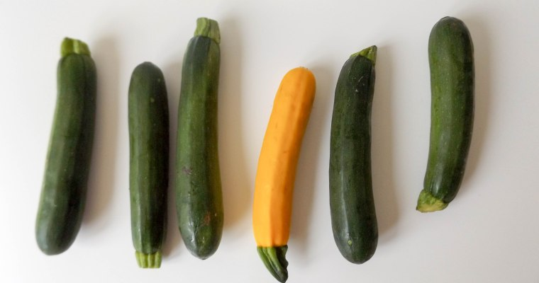 Featured Ingredient: Zucchini