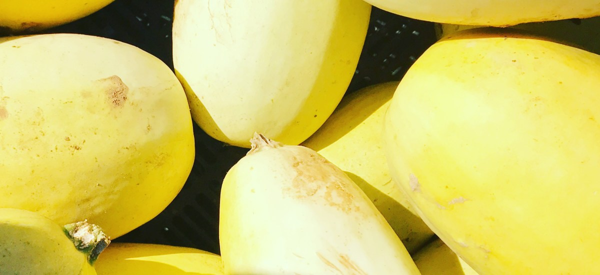 Featured Ingredient: Spaghetti Squash