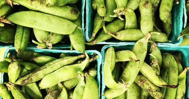 Featured Ingredient: Peas