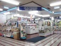 kaiyodo_1.jpg