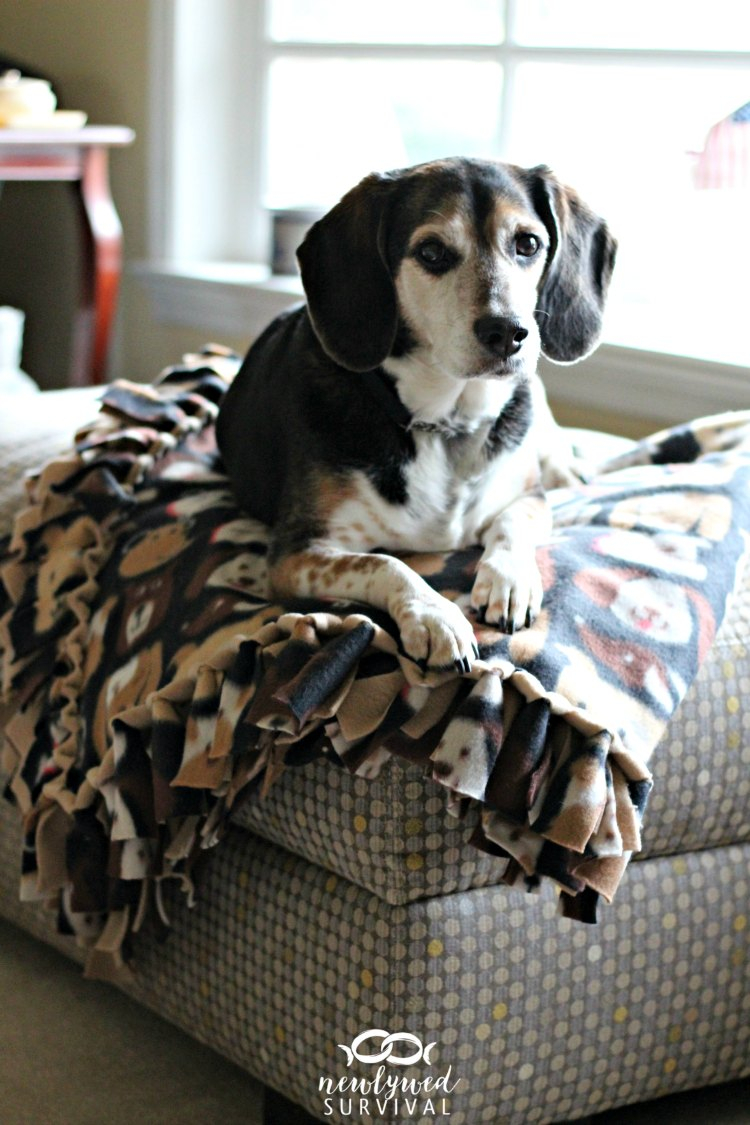 Sewing Blankets Ideas Easy Diy No Sew Fleece Blanket Without The Bulky Knots Newlywed