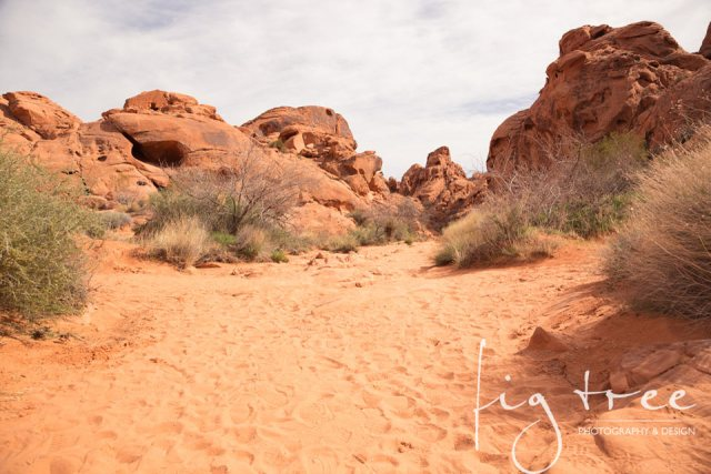 Valley_of_fire_04