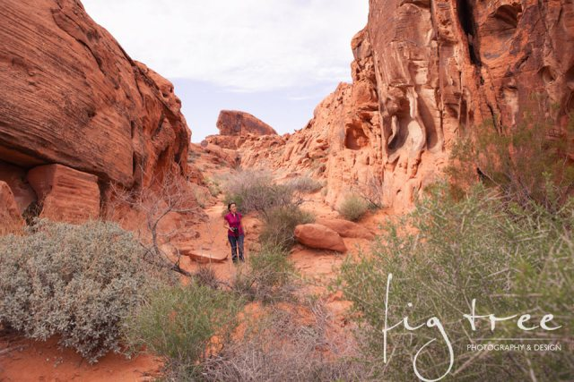 Valley_of_fire_15