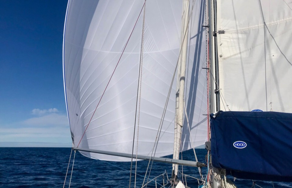 Blog – Page 3 – The Figure 8 Voyage