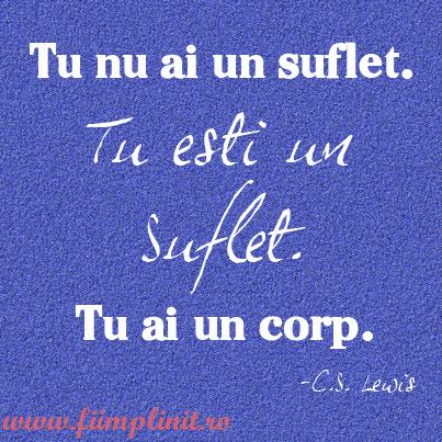 suflet_corp_fiimplinit.ro