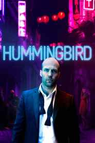 Hummingbird 2013