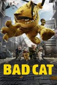 Bad Cat 2016