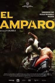 El Amparo 2016