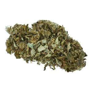 Susz CBD Konopny 6% Selecta Haze 1g Legalna medyczna Marihuana konopie siewne