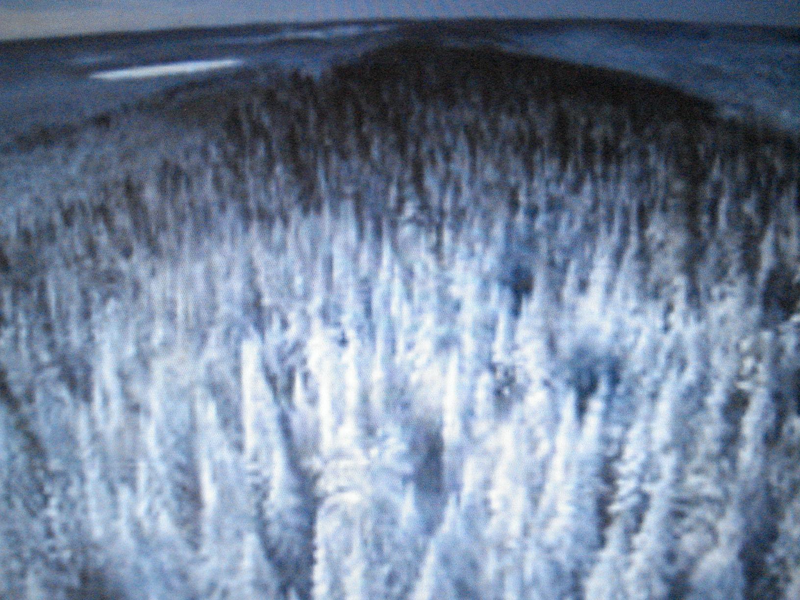 La tundra, el bosque gigantesco de finas maderas que aun se preserva en parte, y resulta como el amazonas que sí está en disminución por la tala excesiva, son el pulmón de la tierra, generando el necesario oxígeno, y capturando el carbono del CO2.