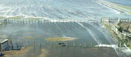 inundaciones-afectan pampa-humeda