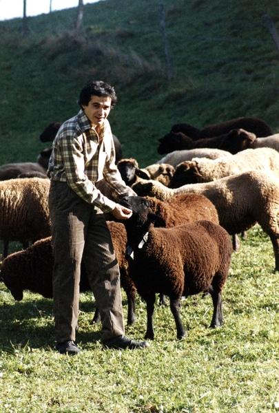 chemise pure laine mérinos blanche filature de chantemerle longo mai avec moutons à l'alpage