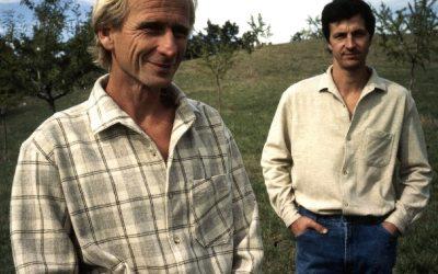 Pourquoi choisir une chemise en laine mérinos ?