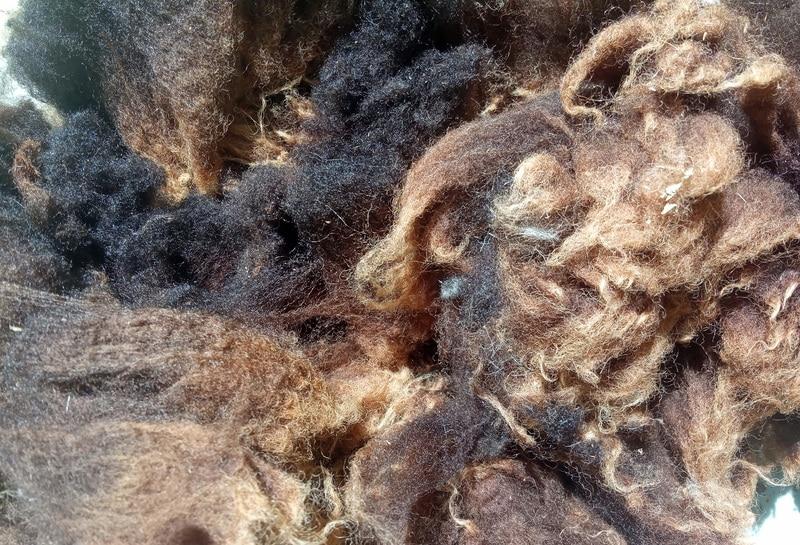 sérigraphie sur foulards laine mérinos teinture végétale pose de la teinture
