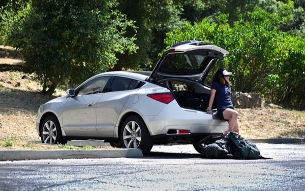 Acura ZDX 2010 cargo