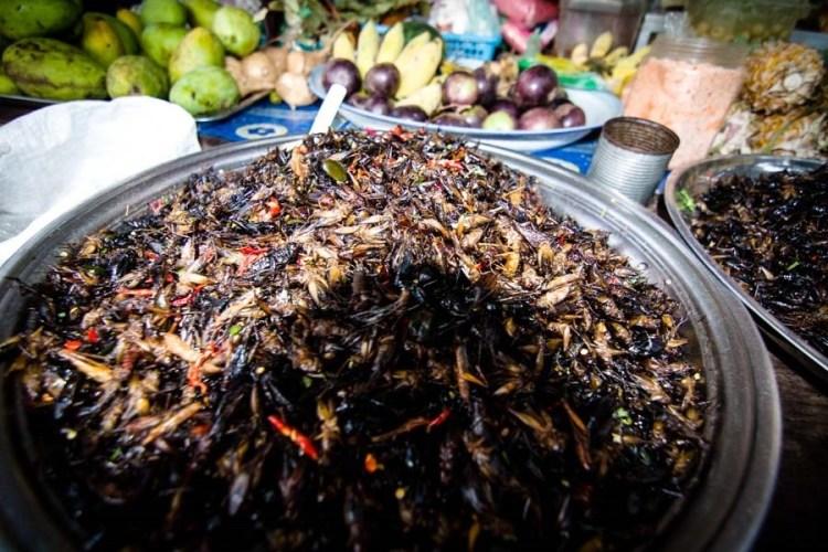 柬埔寨炸昆蟲