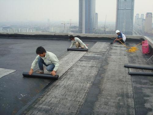 chống thấm cho trần nhà