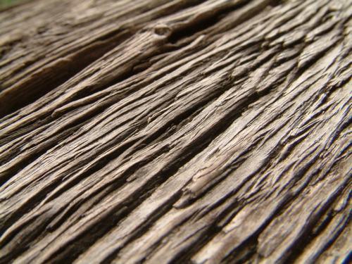 Vật liệu có cấu trúc tự nhiên