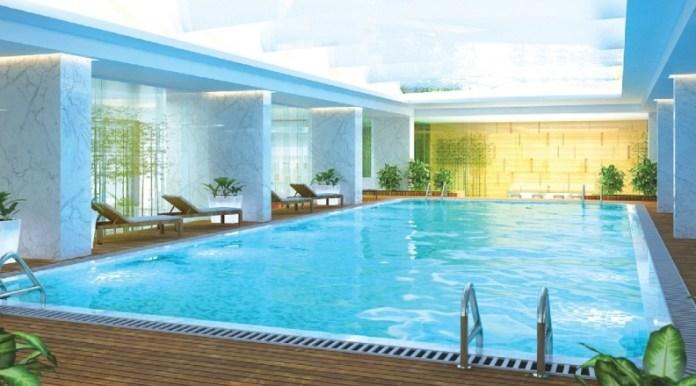 Phối cảnh bể bơi