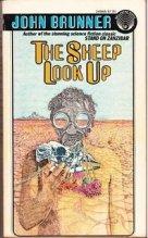 Tinkelman sheep look up
