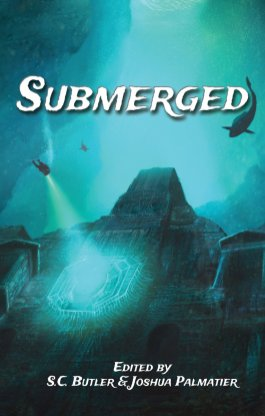 ZNB Submerged cover