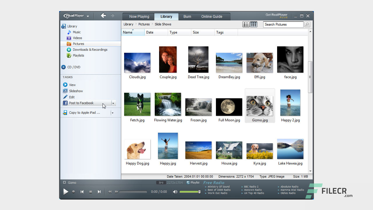 Scr2_RealPlayer_free-download