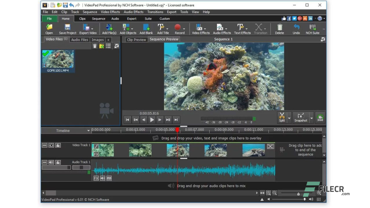 Scr5_NCH-VideoPad-Video-Editor-Professional_free-download