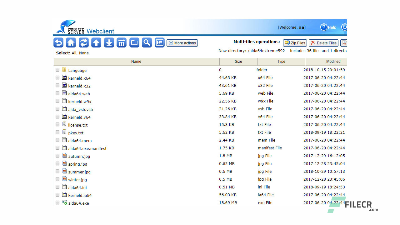 Scr8_Wing-FTP-Server_Free-download