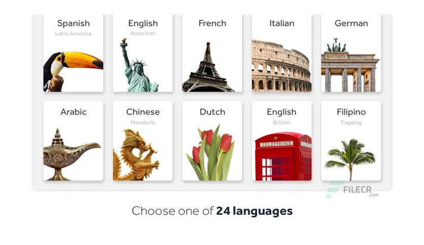 Rosetta Stone Pro 7.0.0: Learn Languages