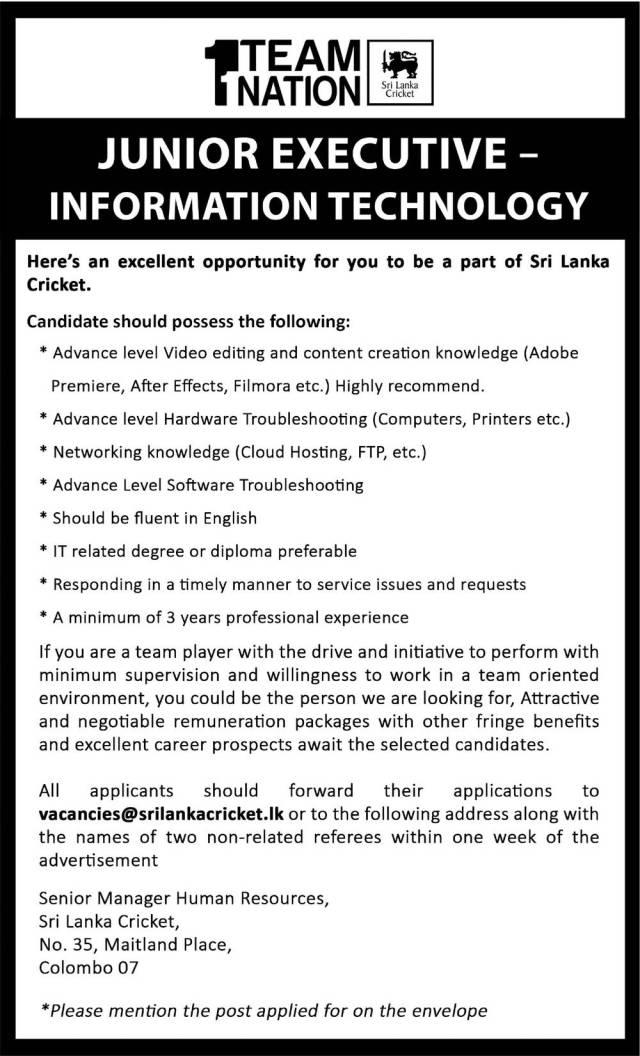 Junior Executive - Information Technology