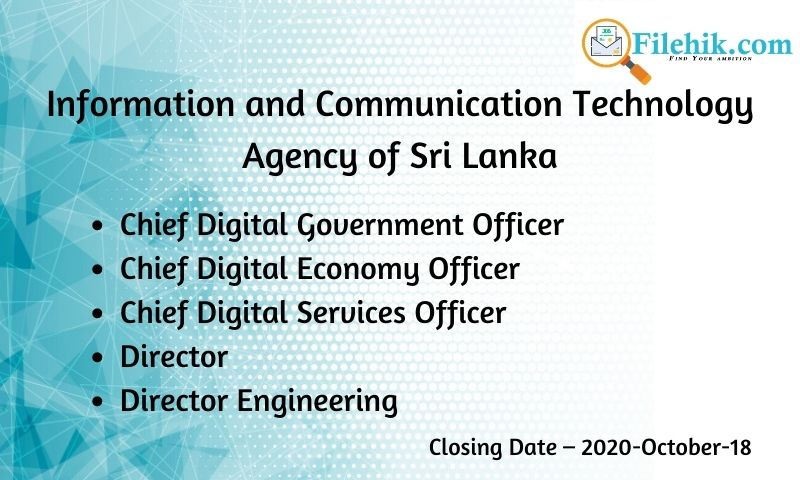 Chief Digital Government Officer, Chief Digital Economy Officer, Chief Digital Services Officer, Director, Director Engineering