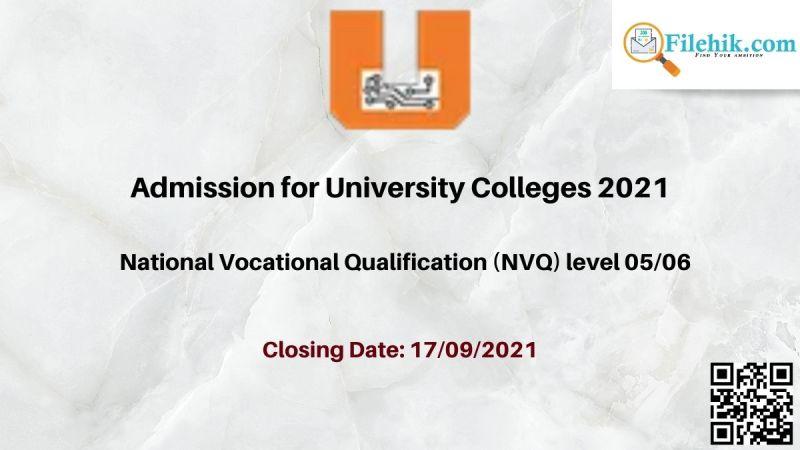 National Vocational Qualification (NVQ) level 05/06