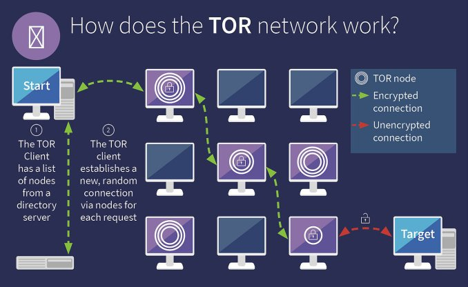 how does to work your tor browser download