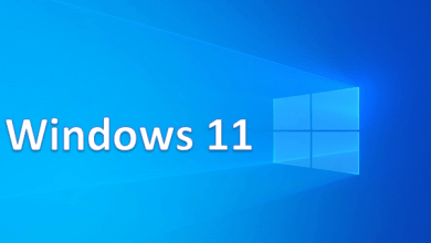 WINDOWS 11 iso pro