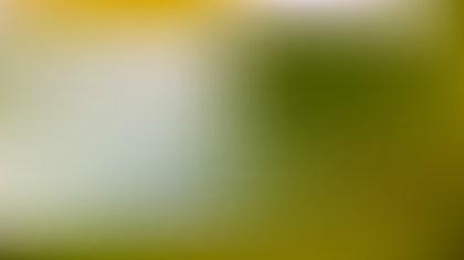 Light Green Photo Blurred Background