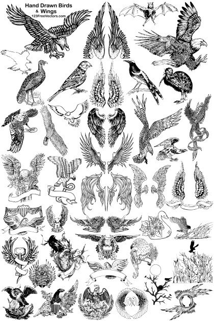 41 Hand Drawn Birds and Wings Vector Pack