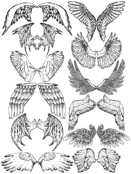 Hand Drawn Wings Vector and Photoshop Brush Pack-04
