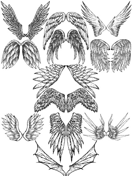 Hand Drawn Wings Vector and Photoshop Brush Pack-10