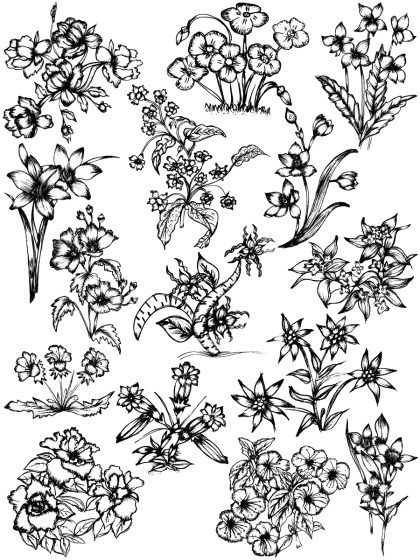 Hand Drawn Sketch Flowers Vector and Photoshop Brush Pack-02