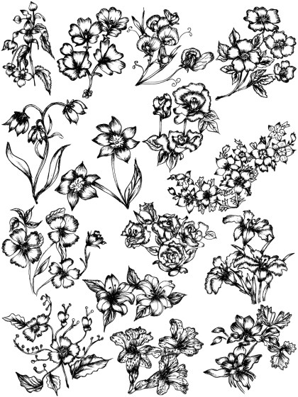 Hand Drawn Sketch Flowers Vector and Photoshop Brush Pack-05