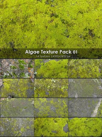 Algae Texture Pack-01