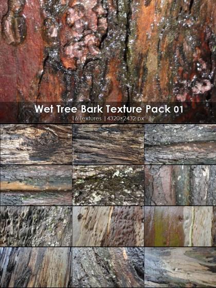 Wet Tree Bark Texture 01